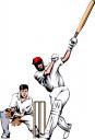 cricket 1_tns