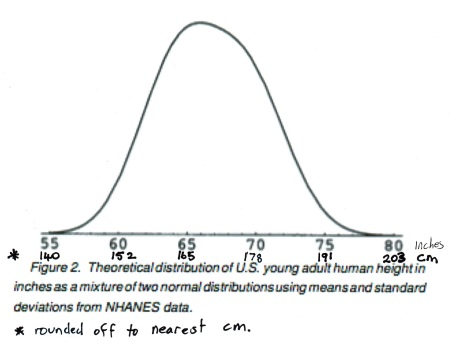 height bell curve Correction