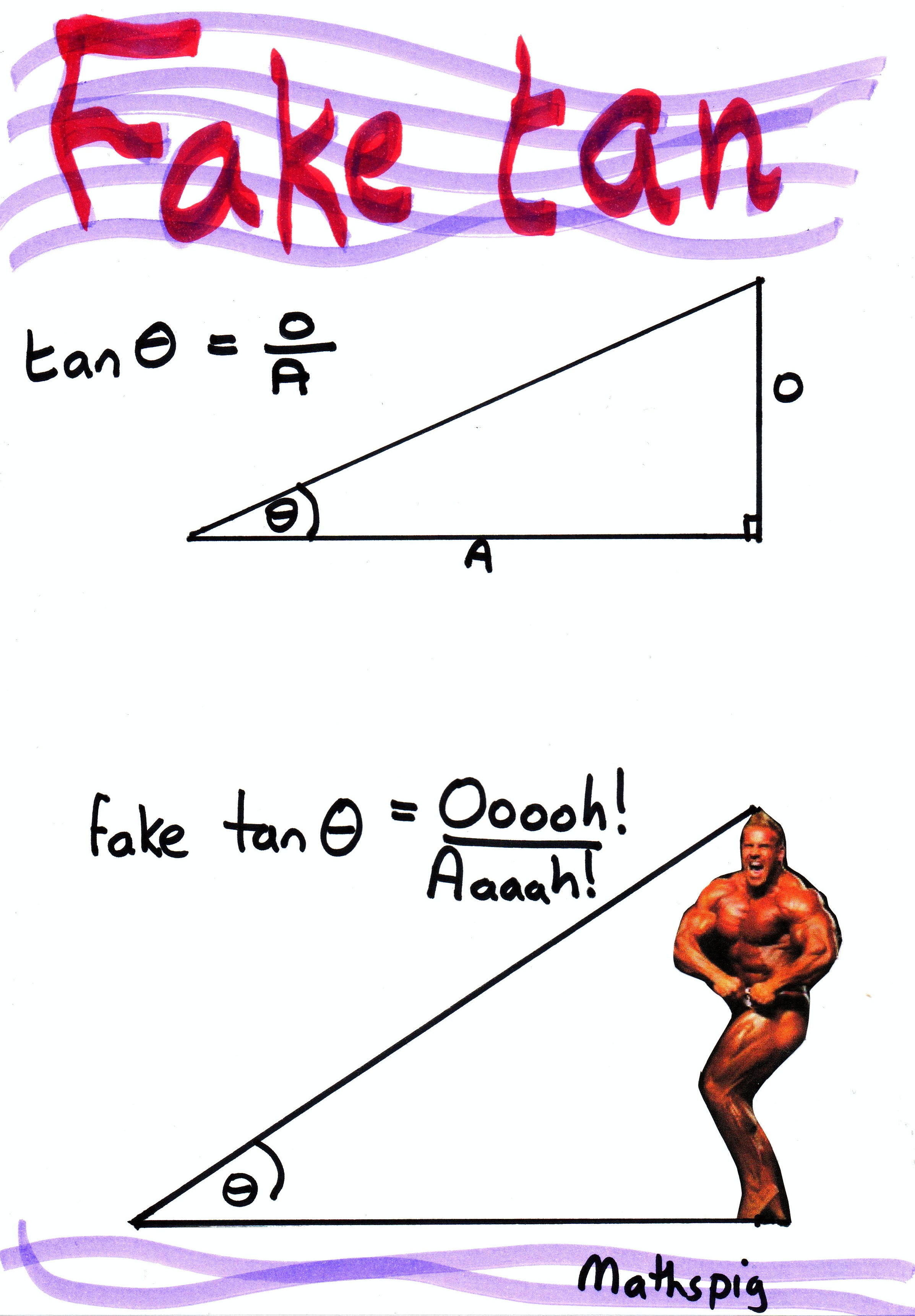 math worksheet : trigonometry joke  mathspig blog : Math Joke Worksheets