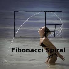fibonacci hair flip