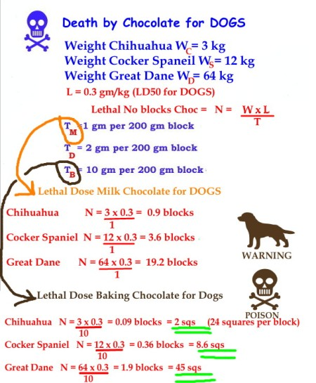 Mathspig Death by Chocolate for DOGS
