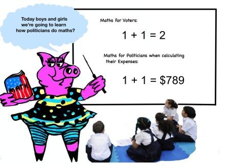 Mathspig Politicans maths