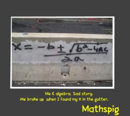 Quadratic Equation  joke Mathspig