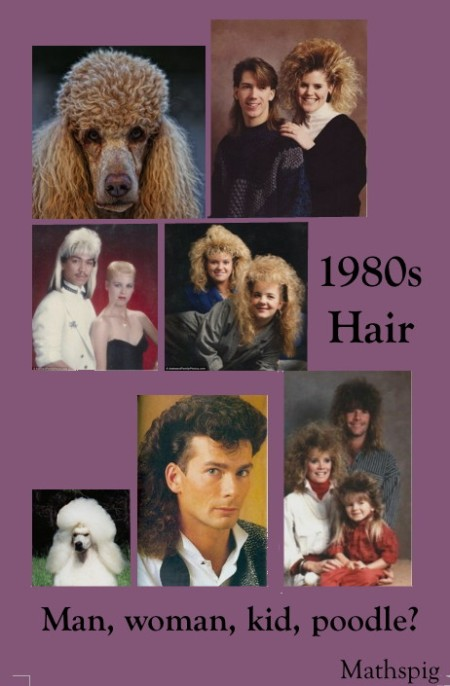 1 Mathspig 1980s hair