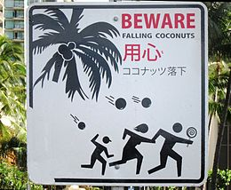 260px-'BEWARE_FALLING_COCONUTS'_sign_in_Honolulu,_Hawaii