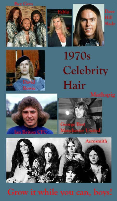 4 Mathspig 1970s celebrity hair
