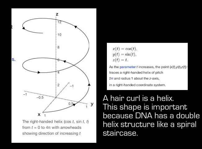 Hair maths 1 the curly problem with curly hair mathspig blog pic 3 helix graph and equation mathspig ccuart