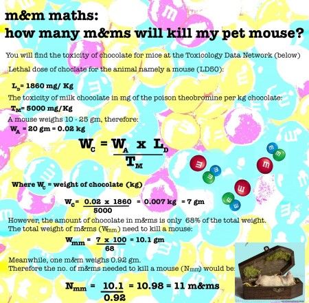 mathspig m&m maths 10