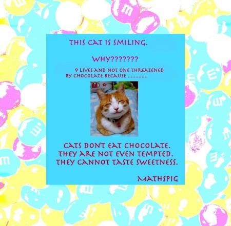 mathspig smiling cat 2