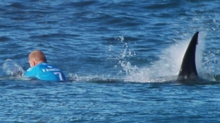 1 Mick fanning shark attack