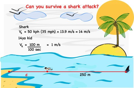 3 Shark attack diagram Mathspig